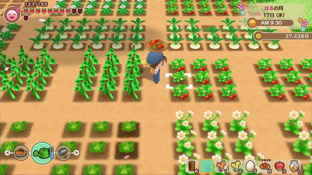 牧場物語 再会のミネラルタウンのゲーム画面